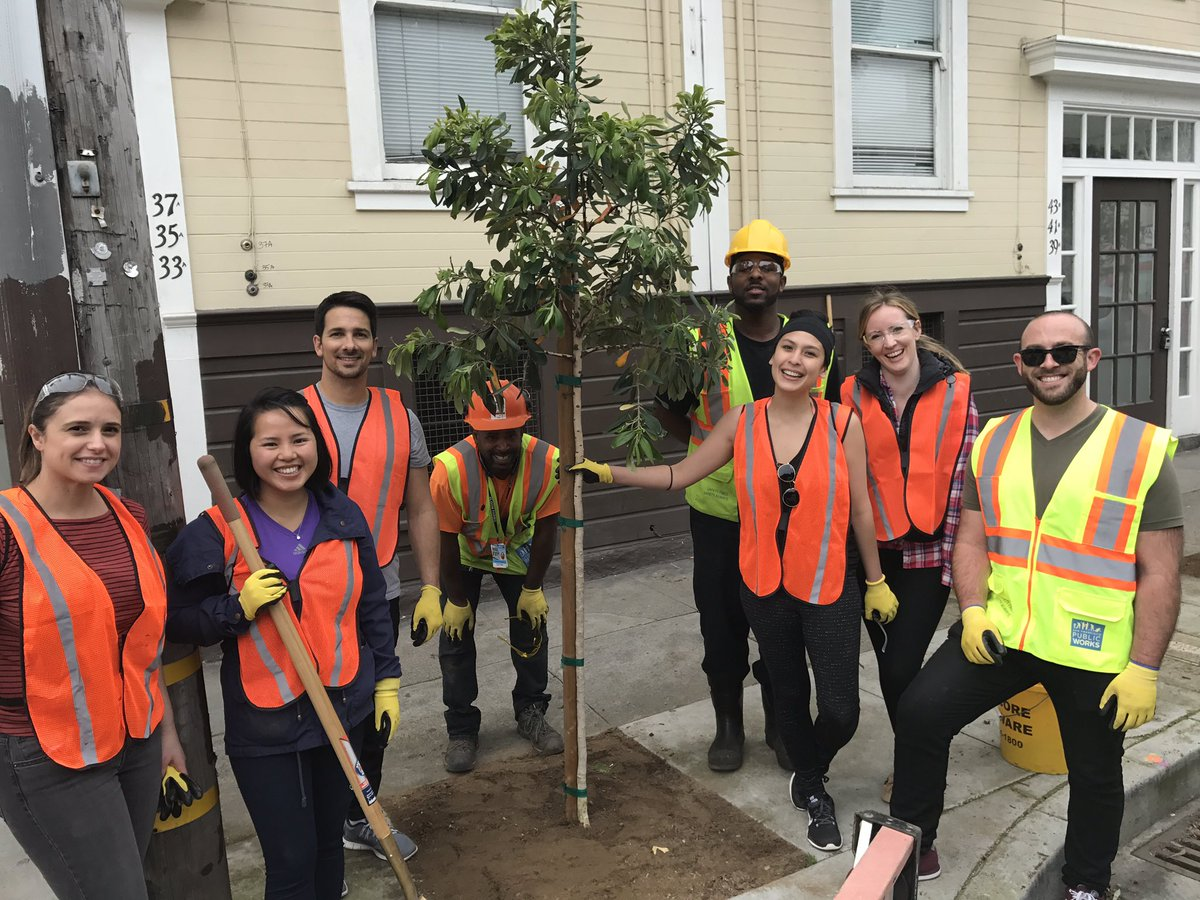 Volunteers planting a tree in District 11