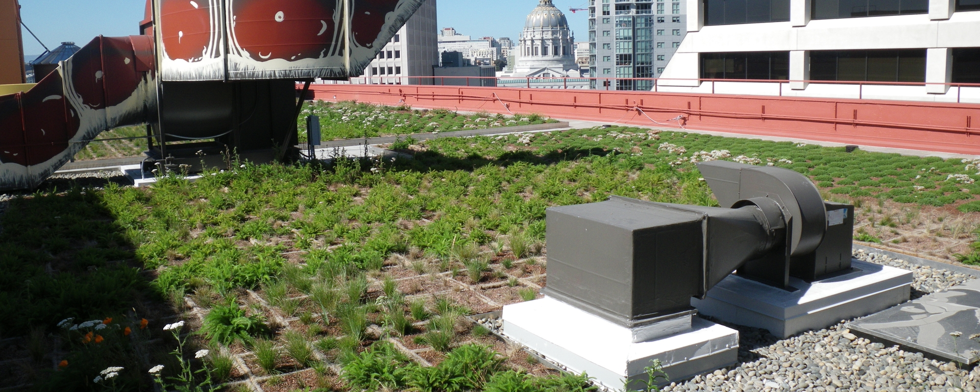 One South Van Ness Roof Replacement/Living Roof Project
