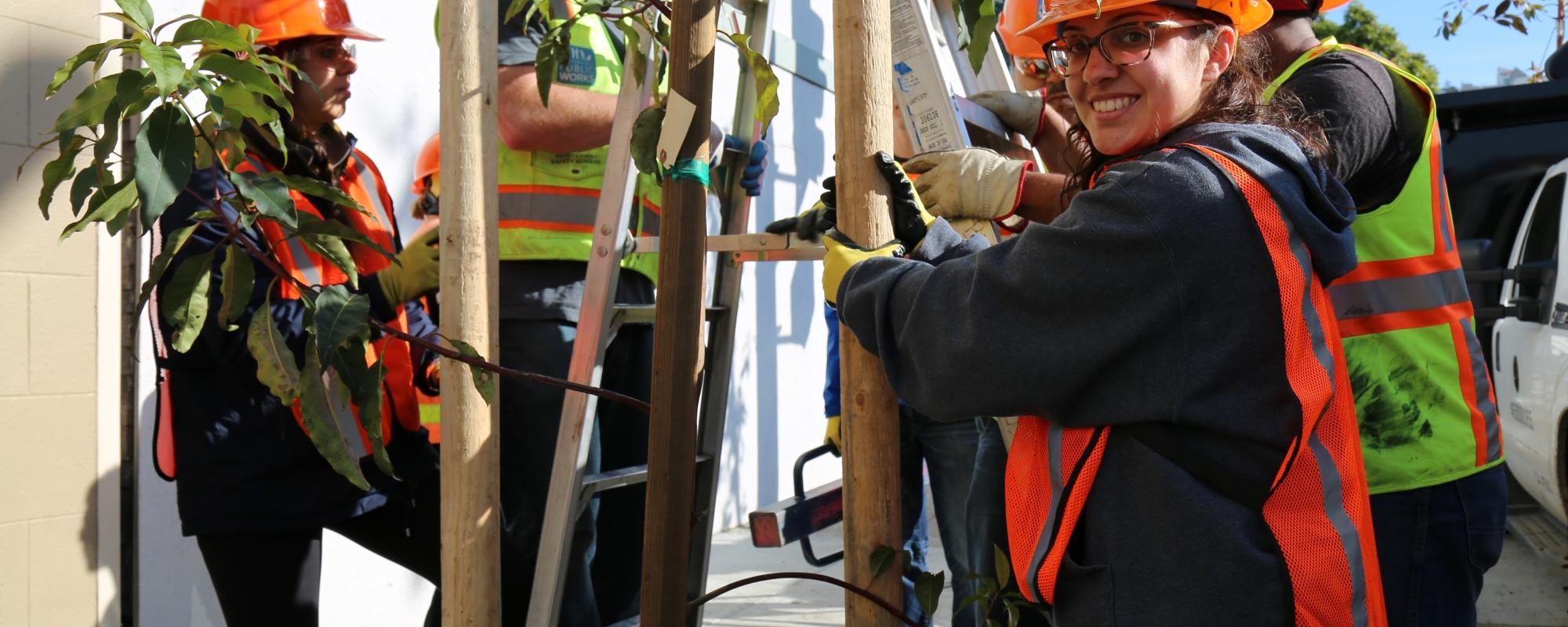 Volunteers planting a tree